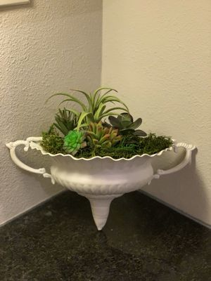 Artificial Succulent Plants for Sale in Tampa, FL