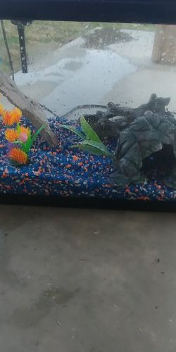 20 Gallon Fish Tank for Sale in Clovis,  CA