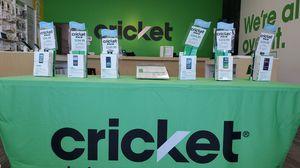 Cricket packs for Sale in Kailua-Kona, HI