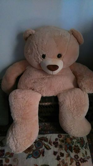 Giant Teddy Bear for Sale in Concord, NC