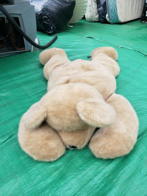 Huge teddy bear for Sale in Tigard, OR