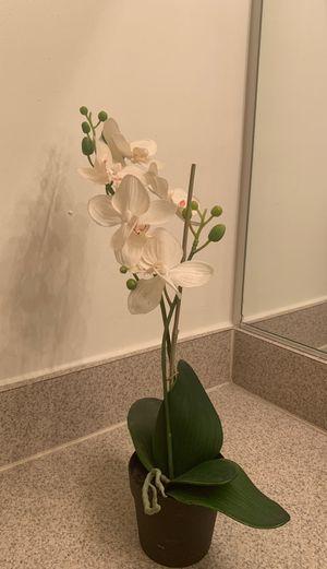 Artificial orchid for Sale in Fairfax, VA