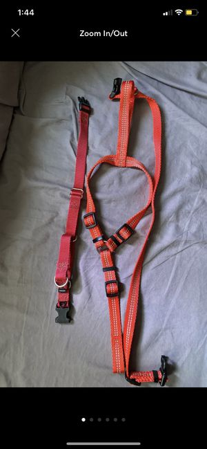 Dog harness N training collar for Sale in Monterey Park, CA