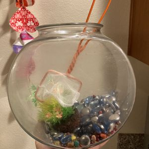Small/medium sized Fishbowl & Accessories for Sale in Sherwood, OR