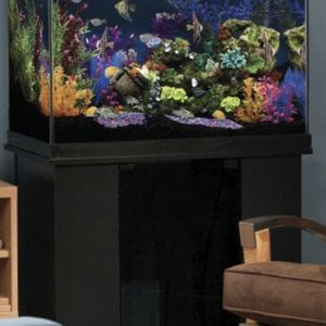 56 Tall Fish Tank And Stand With White And Black Sand for Sale in Renton, WA