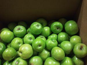 40 lbs Arizona granny smith apples for Sale in Mesa, AZ