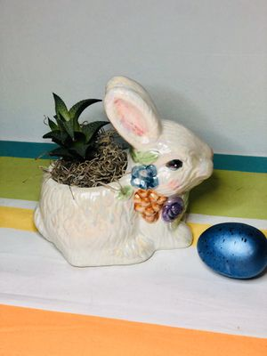 Bunny succulent planter for Sale in Festus, MO