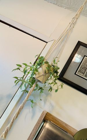 Macrame plant holder for Sale in Jersey City, NJ
