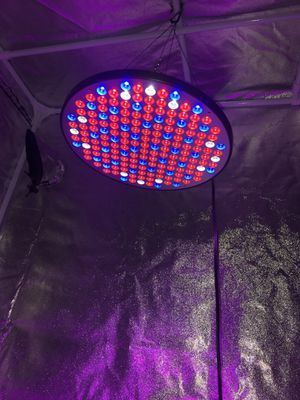 GROW TENT AND LED GROW LIGHT for Sale in Tucker, GA