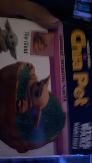 Baby today chia pet brand new for Sale in Cypress, CA