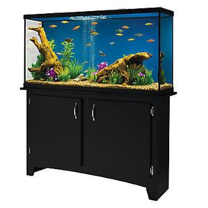 Brand new 60 gallon tank and stand combo for Sale in Chicago, IL