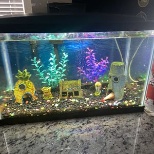 Aquarium 10 Gallons With Spongebob Ornaments And Fish for Sale in Orlando, FL