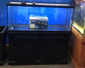 55 gallon aquarium fish tank complete $400 for Sale in Philadelphia, PA