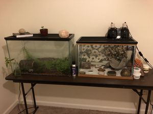 Reptile tanks and supplies for Sale in Charlotte, NC