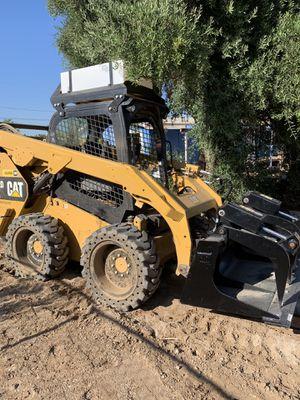 Bobcat for Sale in Perris, CA