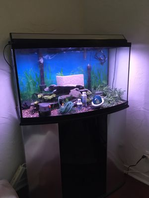 46 gal Aquarium + Supplies and Stand for Sale in Palm Springs, CA
