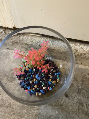 Fish tank for Sale in Clackamas, OR