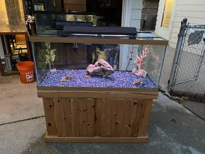 75gl Fish Tank with Stand & Accessories for Sale in Burbank, IL