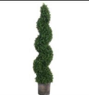 2 Boxwood spiral topiaries for Sale in Orlando, FL