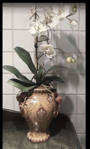 Silk Orchid for Sale in Coral Gables, FL