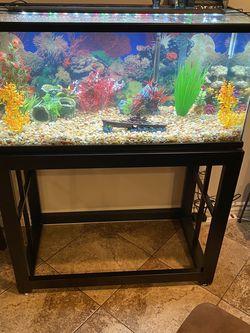 40 Gallon Fish Tank, Stand & Accessories for Sale in La Mesa,  CA