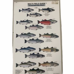 Mac's Field Guide To Salmon And Trout Laminated 2-Sided for Sale in Beaverton, OR