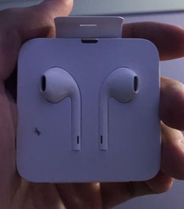 Apple Headphones (Lightning) and Lightning Charger