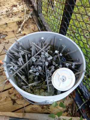 """Large bucket 10"""" Phillips #3 screws for Sale in Charlotte, NC"""