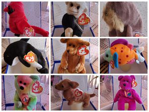 Beanie babies collection for Sale in Wittmann, AZ
