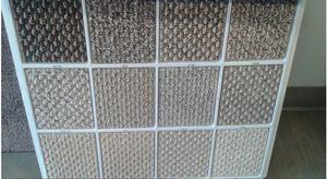 Carpet for sale for Sale in Chicago, IL