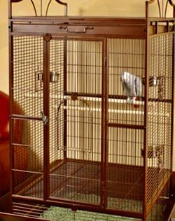 Standing Parrot Cage for Sale in Dallas,  TX