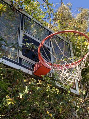 """""""Lifetime"""" basketball hoops (2 hoops) 52"""" for Sale in Los Angeles, CA"""