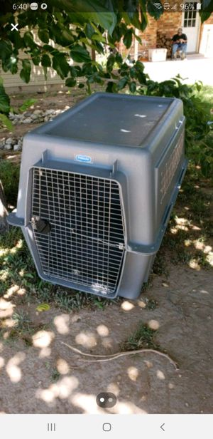 Petmate Giant size kennel for Sale in Midland, TX