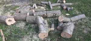 Fire wood free. for Sale in West York, PA