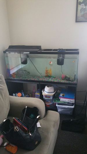 55 gal fish tank with stand for Sale in Nashville, TN