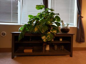 TV/plant/book stand (weathered grey) for Sale in Seattle, WA