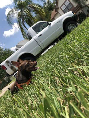 Trade or sell ford ranger for Sale in Winter Haven, FL