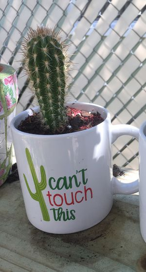 """Cylindrical Cactus in """"Can't Touch tThis"""" humorous mug. for Sale in Poinciana, FL"""
