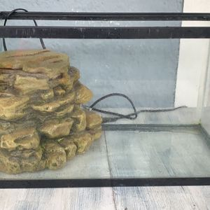 10 Gallon Fish Tank And Filter for Sale in Daytona Beach, FL