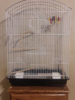 Larg Bird Cage for Sale in Hewitt,  TX