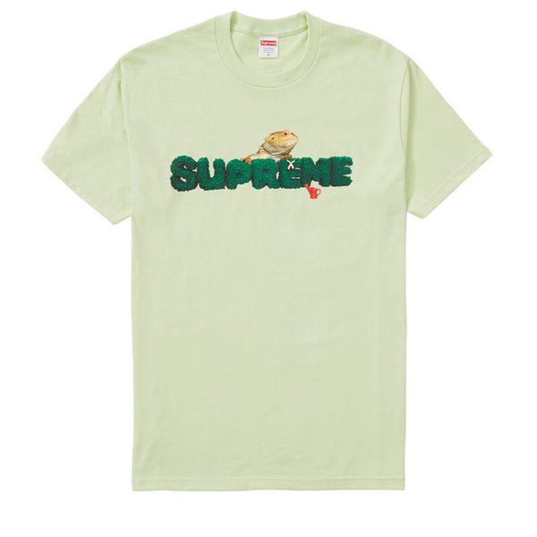 Supreme lizard tee (large) (mint)