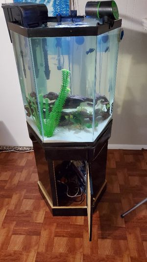 45 Gallon Hexagon Fish Tank for Sale in Queens, NY