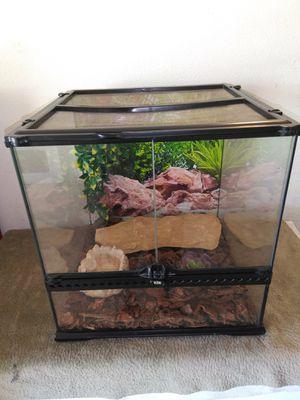 Reptile Tank 18×18×18 EXO-TERRA for Sale in Rialto, CA