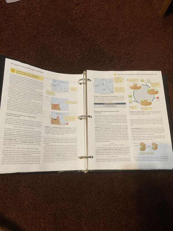 Principles of Life - Biology textbook