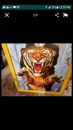 Roaring Tiger out the door $30.00 cash only (serious buyers) for Sale in Dallas, TX