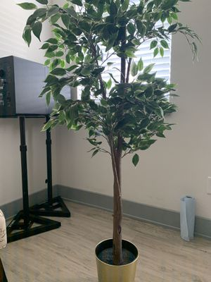 Ikea plant home decor for Sale in Fort Lauderdale, FL