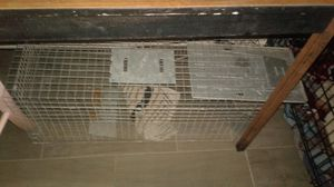 Trap cage for Sale in Indianapolis, IN
