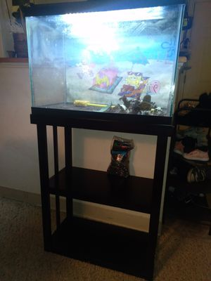 20 gallon fish tank with stand, led light, glowing gravel, filter and water heater for Sale in Woburn, MA