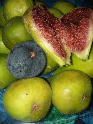 3lbs Fresh organic Figs Mediterranean sweat delicious for Sale in Lakewood, CA
