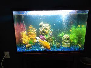 Fish Tank for Sale in Bellmawr, NJ